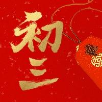 初三红金喜庆春节新春新年公众号次图