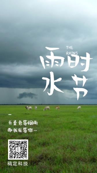 雨水时节二十四节气手机海报