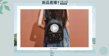 文艺风箱包/女挎包海报