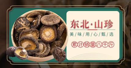 食品/菌菇介绍海报