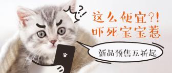 萌宠宠物店新品可爱猫主图公众号首图