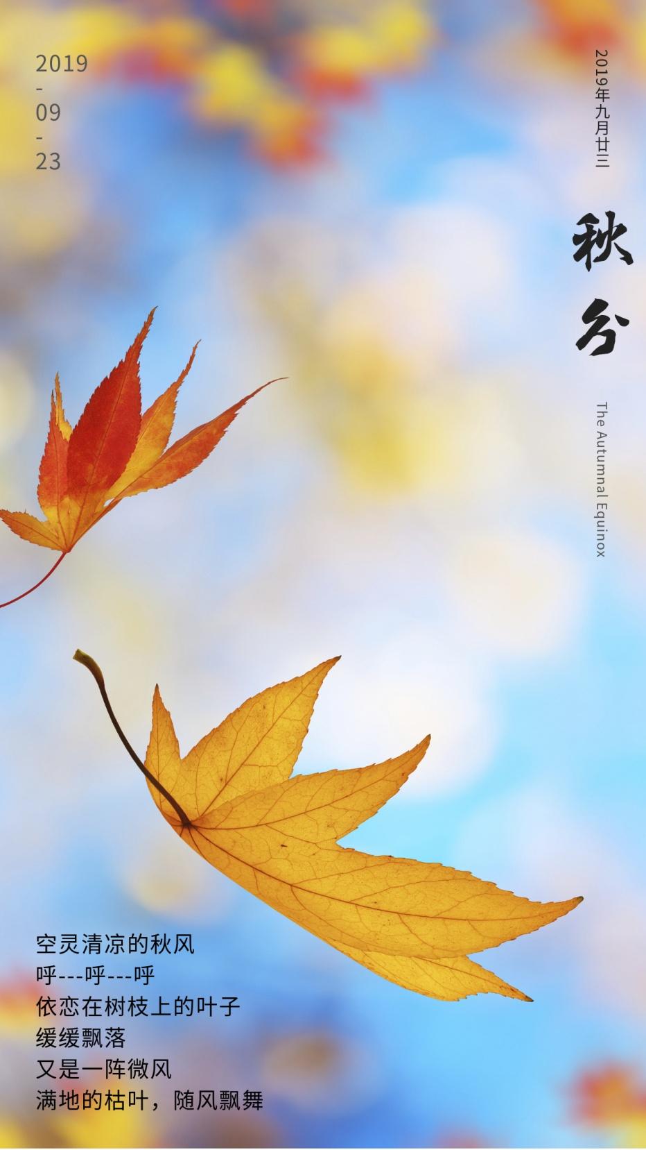 秋分节日节气唯美小清新树叶手机海报